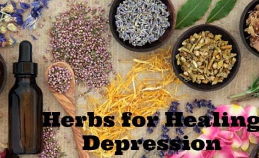 natural herbs remedies anxiety depression panic attacks