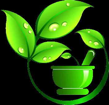 natural herbs cure portal