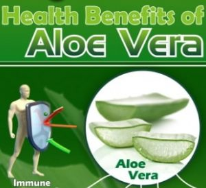 health benefits aloe vera juice