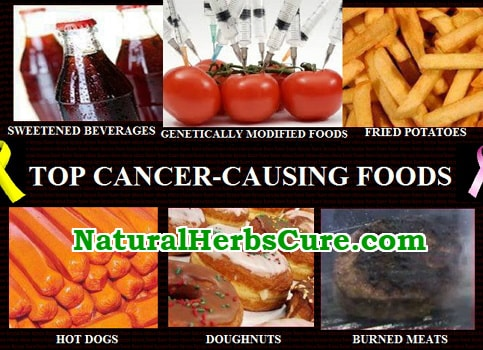 list of 20 cancer causing foods to avoid