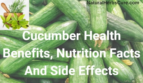 cucumber health benefits nutrition facts