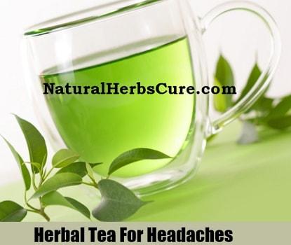 herbal teas cure headaches migraines