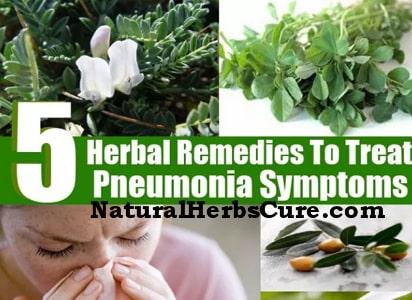 herbs treat pneumonia home
