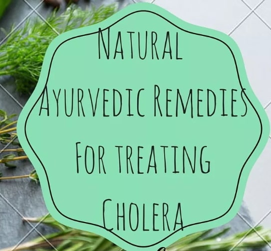 ayurvedic treatment cholera