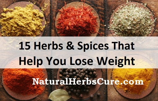 best natural herbs spices weight loss
