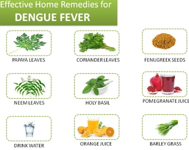 dengue fever home remedies