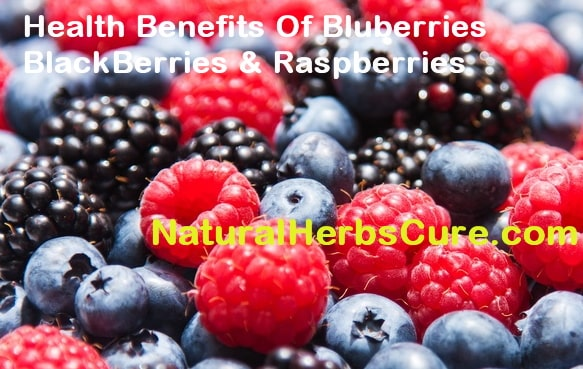 raspberries blue berries black berries benefits