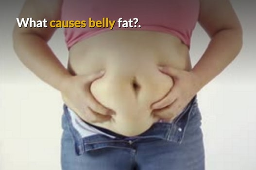causes of belly fat males females
