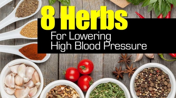 herbs to lower high blood pressure naturally