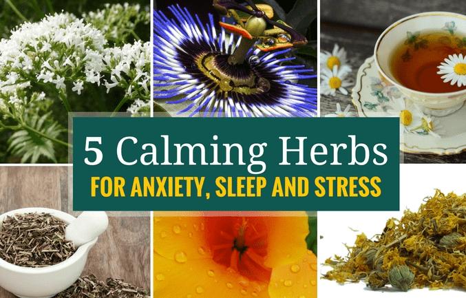 herbs for anxiety sleep stress